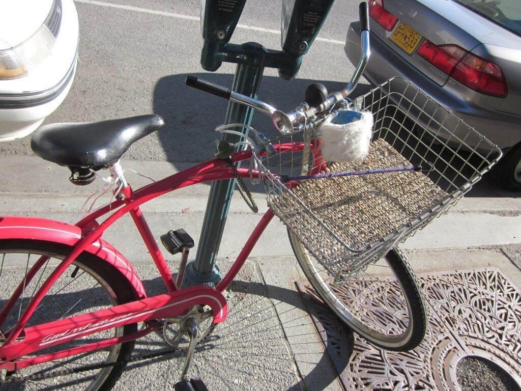 Furry Alaskan bicycle drink kosy !