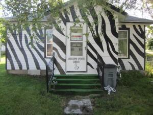 The Zebra House