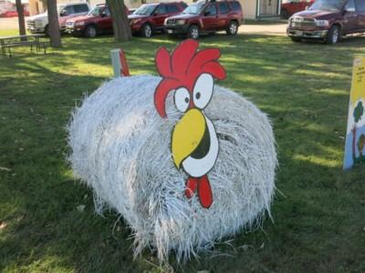 Brown County Fair, Aberdeen, SD 2016 - Chicken